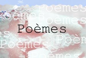 Bouton poèmes